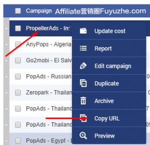 在PropellerAds创建一个Campaign