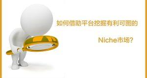 如何借助平台挖掘有利可图的Niche关键词?