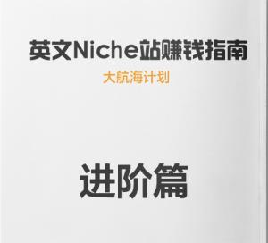 大航海计划Niche LC被动收入训练营