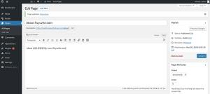 在WordPress中创建页面